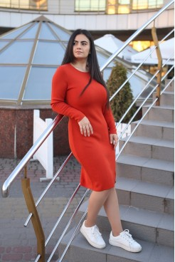 Платье  NITA  Л 799-20 терракот